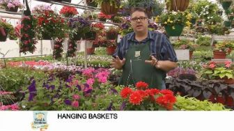 button to video on hanging baket flower selection from Waukesha Floral