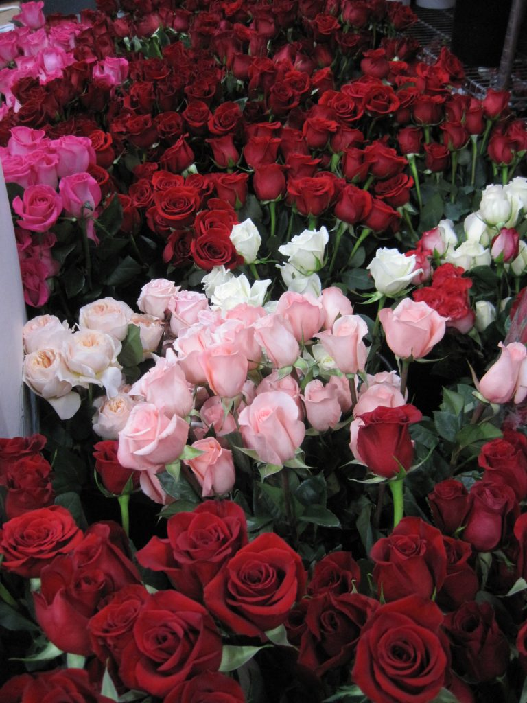 Roses for Sweetest Day