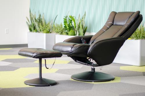 modern office plants. zywave1 modern office plants t