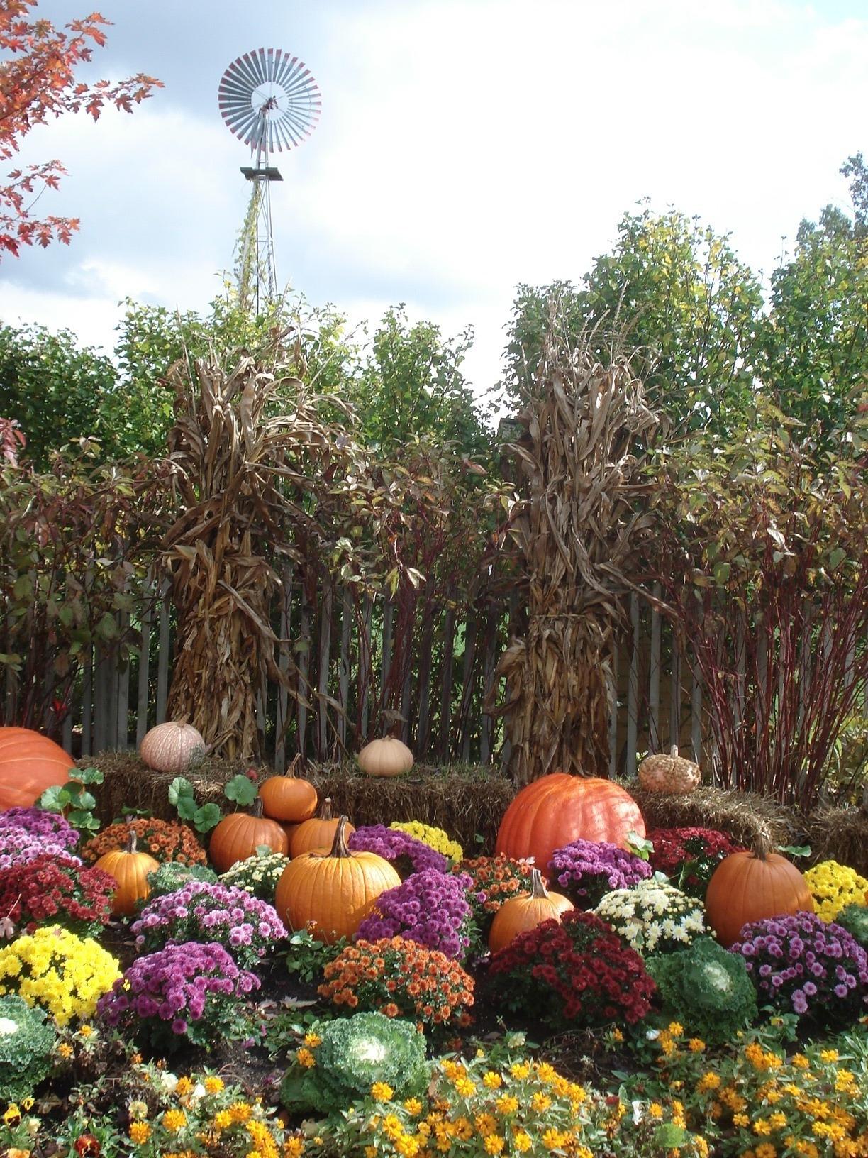 Meijer Gardens 034 -