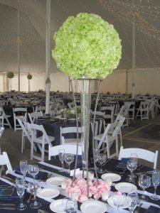 Wedding 6.20.15 011